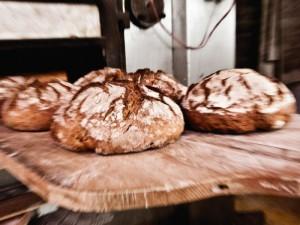 El retorno del buen pan